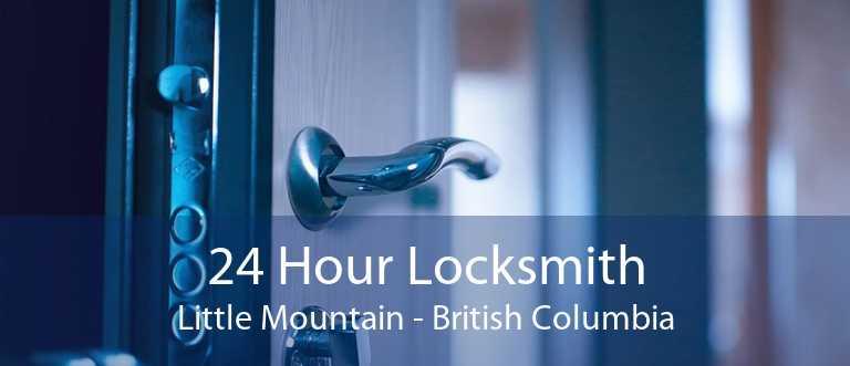24 Hour Locksmith Little Mountain - British Columbia