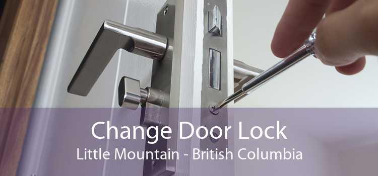 Change Door Lock Little Mountain - British Columbia