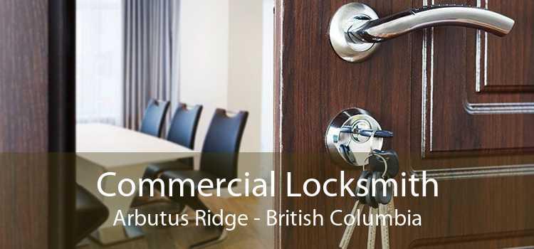 Commercial Locksmith Arbutus Ridge - British Columbia