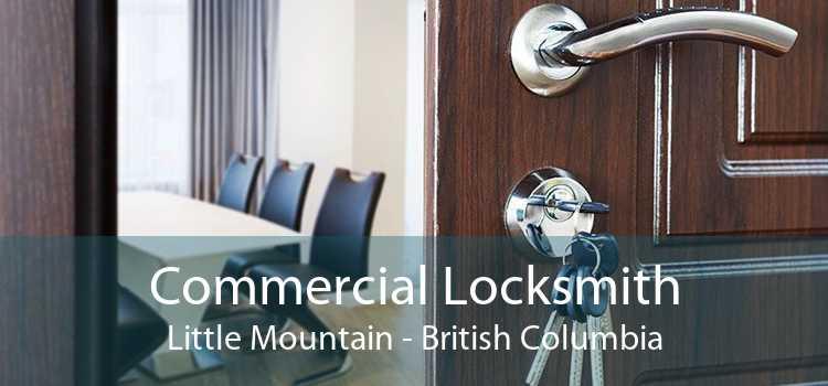 Commercial Locksmith Little Mountain - British Columbia
