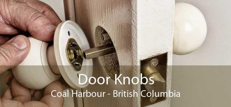 Door Knobs Coal Harbour - British Columbia