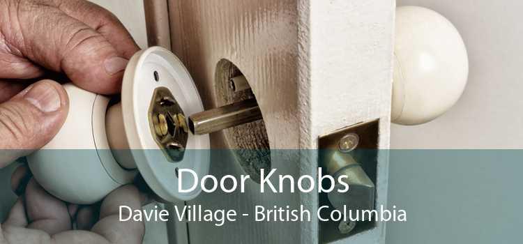 Door Knobs Davie Village - British Columbia
