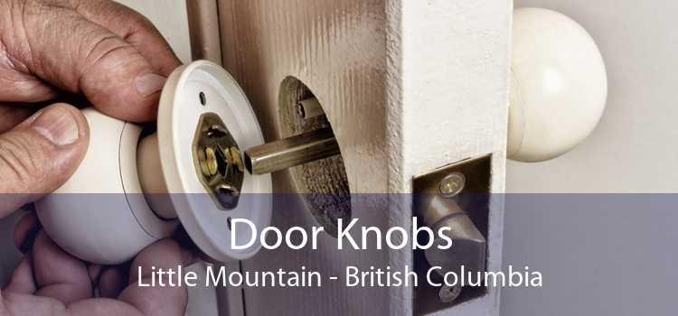 Door Knobs Little Mountain - British Columbia