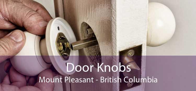 Door Knobs Mount Pleasant - British Columbia