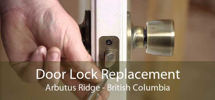 Door Lock Replacement Arbutus Ridge - British Columbia