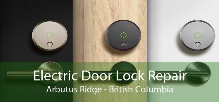 Electric Door Lock Repair Arbutus Ridge - British Columbia