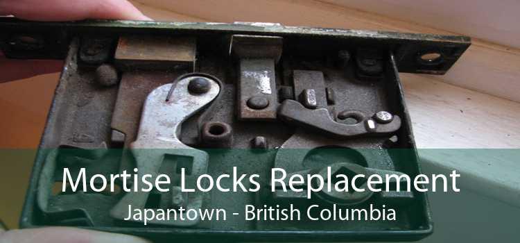 Mortise Locks Replacement Japantown - British Columbia