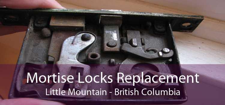 Mortise Locks Replacement Little Mountain - British Columbia