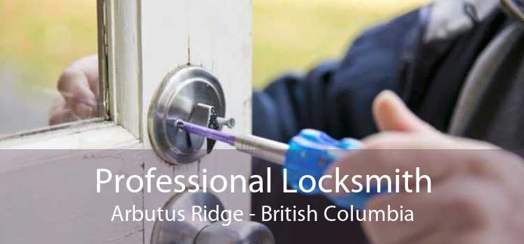 Professional Locksmith Arbutus Ridge - British Columbia