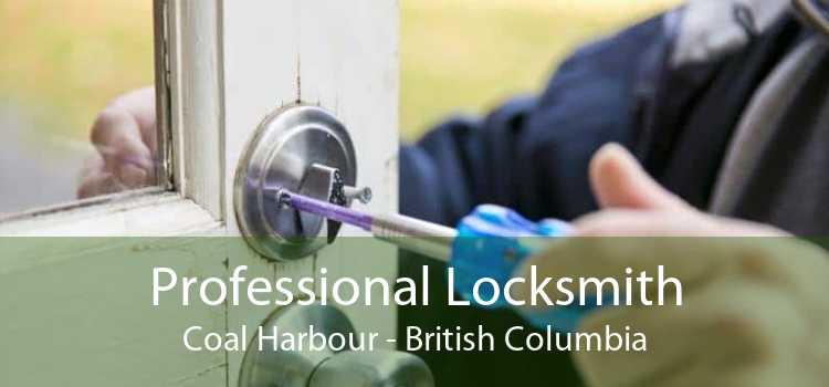 Professional Locksmith Coal Harbour - British Columbia