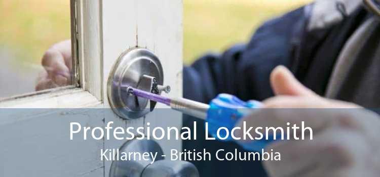Professional Locksmith Killarney - British Columbia