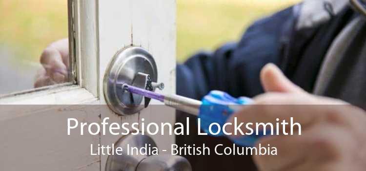 Professional Locksmith Little India - British Columbia