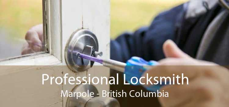 Professional Locksmith Marpole - British Columbia