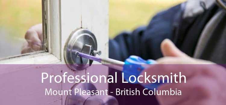 Professional Locksmith Mount Pleasant - British Columbia