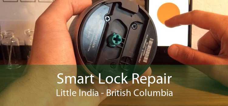 Smart Lock Repair Little India - British Columbia